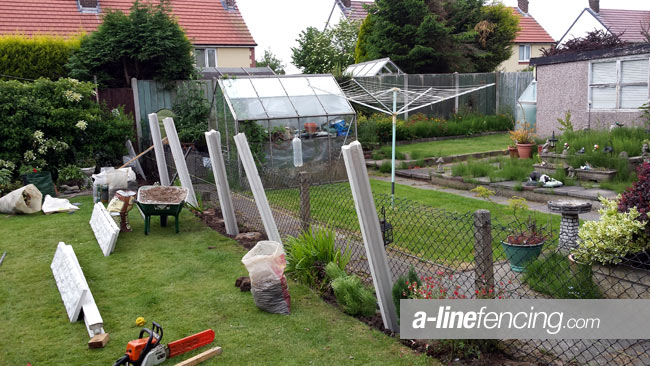 Garden with concrete fencing posts