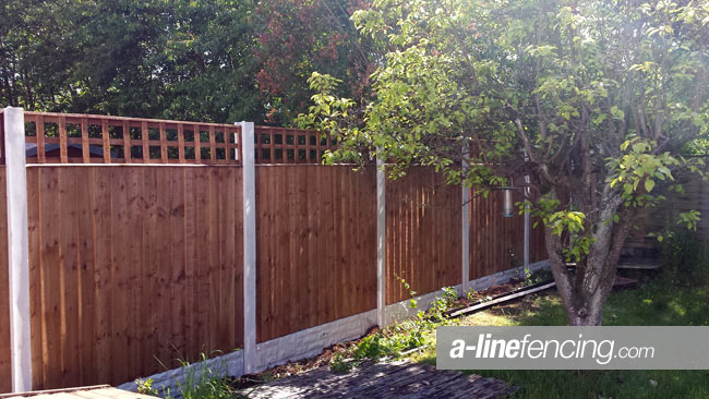 Timber fencing with concrete posts